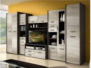 Obývací stěna v moderním dekoru
